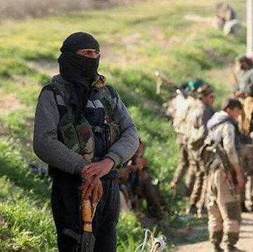 """تنظيم """"ي ب ك/بي كا كا"""" الإرهابي يطلق سراح المئات من داعش في مخيم الهول بمحافظة الحسكة شمال شر"""