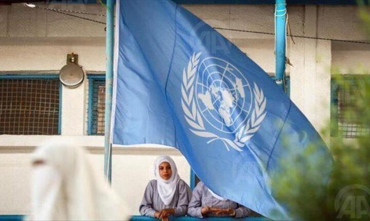 أونروا تطلق نداء إنسانيا بـ164 مليون دولار لصالح الفلسطينيين
